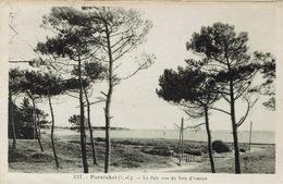 Pornichet (153), La Baie Vue Du Bois D'Amour, Jolie Carte - Pornichet