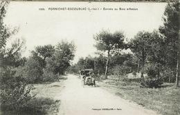 Pornichet (156), Entrée Du Bois D'Amour, Jolie Carte - Pornichet