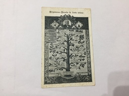 Cartolina Albero Genealogico 1906 Pietro Barberis Cavaliere Massone Massoneria.? - Généalogie