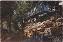 CPM - TUNIS - Fleuristes De L'avenue Bourguiba - Edition Tanit - Tunisia