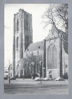 NL.- OIRSCHOT. PAROCHIEKERK St. PETRUS. Old Cars. - Kerken En Kathedralen