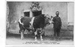 Ferme Des Lucottes Alfred Henry Proprietaire - France