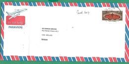 ! - Inde (India) - Enveloppe Avec 1 Timbre - Envoi Vers Ixelles - Cachet De 2007 - Papillon - Lettres & Documents