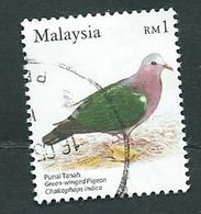 Malesia, Malaysia 2005 ; Tortora Smeraldina, Grey-capped Emerald Dove, Chalcophaps Indica. Used. - Malesia (1964-...)