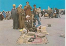 Marrakech - Incantatore Di Serpenti - Marrakech