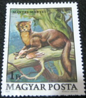 Hungary 1979 Protected Animals Martes Martes 1ft - Used - Hungary