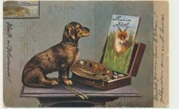 Dackel - Tekel - Chien - Dog - Hunde
