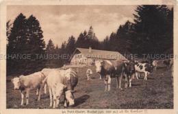 Suchet Animee Le Petit Chalet ET LES BOCHES Rances Jura-Nord Vadois Waadt Schweiz Vaches Rinder Kühe Cows TIMBRE - VD Vaud