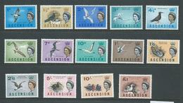 Ascension 1963 Bird Definitives Set Of 14 MLH - Ascension