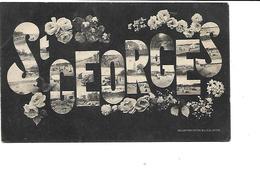17-SAINT-GEORGES-de-DIDONNE-Carte à Vues Multiples-Editeur BILLAUD-Royan - Saint-Georges-de-Didonne