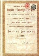 AGRICOLE Et INDUSTRIELLE D'ÉGYPTE - Afrique