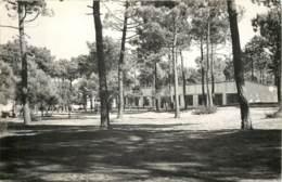 85 - LA BARRE DE MONTS - Carte Photo D'un Centre De Vacances - Colonies 1951 - Francia