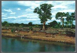 CP  Edição Elmar 518- Belezas E Costumes De Angola-Vista De Uma Sanzala - Afrique
