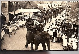 Netherlands Indies, Scarce SHARP PRIVATE Photo Elephant Ride Medan,Belawan 1929  Via SS Noort (14-58) - Indonesië
