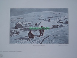 184-2 Stolitza: Winterbild Dorf Kinder Farbdruck 1905 !! - Drucke