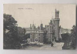 ANTOING - 1914 - Le Château - Antoing