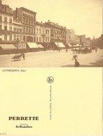 Perrette De Beukelaer - Antwerpen - Meir - Boom
