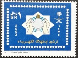 Saudi Arabia 2003 Electricity Conservation - Saudi Arabia