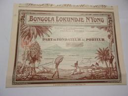 BONGOLA LOKUNDJE N'YONG (douala,cameroun) - Shareholdings