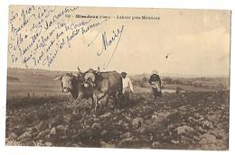32 MIRADOUX GERS LABOUR TRAVAUX DES CHAMPS ATTELAGE DE BOEUFS 1919 CPA 2 SCANS - Otros Municipios