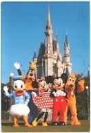 CPM DISNEY. MICKEY, MINNIE, DONALD, GOOFY ET PLUTO. PARC D'ORLANDO, FLORIDE - Disneyworld