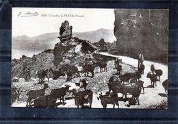 Piana - Les Calanches - Berger Avec Son Troupeau De Chèvres - ( J.Moretti - N° 3138) - Francia