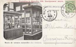 Exposition De Bruxelles 1910 Enseignement Moyen , Musée Des Sciences Naturelles  ( Les Vitrines) - Wereldtentoonstellingen