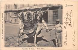 Cuba - Habana H/N - 09 - Vendedor De Frutas - Cuba