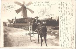 Espagne - MANACOR (Mallorca) - CARTE-PHOTO Moulin à Vent - Molino De Viento - Windmill - Mallorca