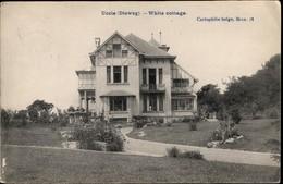 UCCLE :  Dieweg : White Cottage - Ukkel - Uccle
