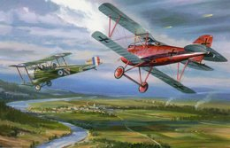 Manfred Von Richthofen - 'Red Baron' - Albatros DIII - Jasta 11 - 1917  -  Art Carte Par Benjamin Freudenthal - Aviadores