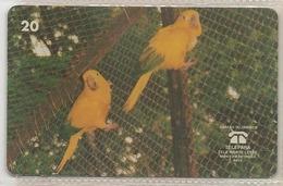 LSJP BRAZIL PHONECARD ARARAJUBA BIRDS - TELEPARA - Brésil
