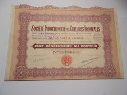 INDOCHINOISE DES CULTURES TROPICALES (1925) - Shareholdings