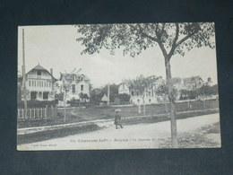 ROYAN    1910    VILLAS DU CHAY   / CIRC /  EDITEUR BRAUN - Royan