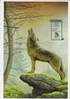 """Geplastificeerd A5 Souvenir """"Wolf"""" S.P.A.B. - 1985-.. Birds (Buzin)"""