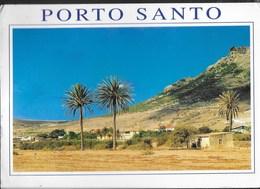 PORTOGALLO - MADEIRA  - PORTO SANTO - VIAGGIATA 2008 FRANCOBOLLO ASPORTATO - Madeira
