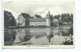 Ciney Le Vieux Château De Ry - Ciney