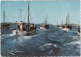 Bohuslän - Fiskeflotten Pa Väg Till Fangstplatsen - Zweden