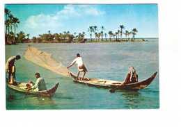 Iraq Irak Fishing In Marshes Peche Pecheur Filet - Iraq