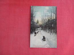 Winter Sports --Toboggan Slide  Saratoga Springs NY       .   Ref 3114 - Winter Sports