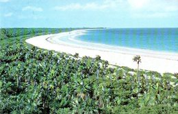 Bahamas ; Windermere Island Club Eleuthera - Bahamas