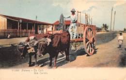 Cuba - Divers / 05 - Ox Cart - Cuba