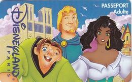 Carte - Passeport  Disney - France