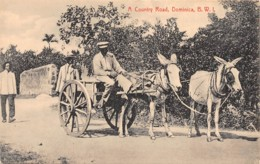 Dominique / 10 - A Country Road - Beau Cliché - Dominique