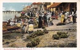 Dominique / 11 - Buying Bananas - Roseau - Dominique