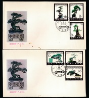 2 F.D.C.  1981 - 1949 - ... Repubblica Popolare