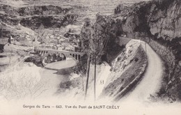 SAINT-CHELY - Vue Du Pont - Saint Chely D'Apcher