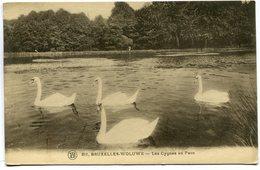 CPA - Carte Postale - Belgique - Bruxelles - Woluwe - Les Cygnes Du Parc - 1932 (SV6767) - Woluwe-St-Lambert - St-Lambrechts-Woluwe