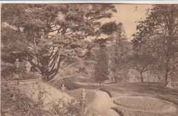 Rixensart , Chateau Du Comte De Mérode  ;  Le Parc - Rixensart