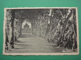 Paliseul Etablissement De Carlsbourg La Charmille - Paliseul